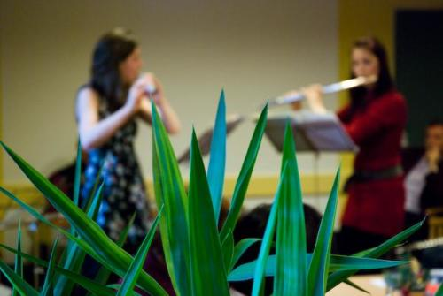 Flute concert at premises of the Caritas elderly home, Wien Penz
